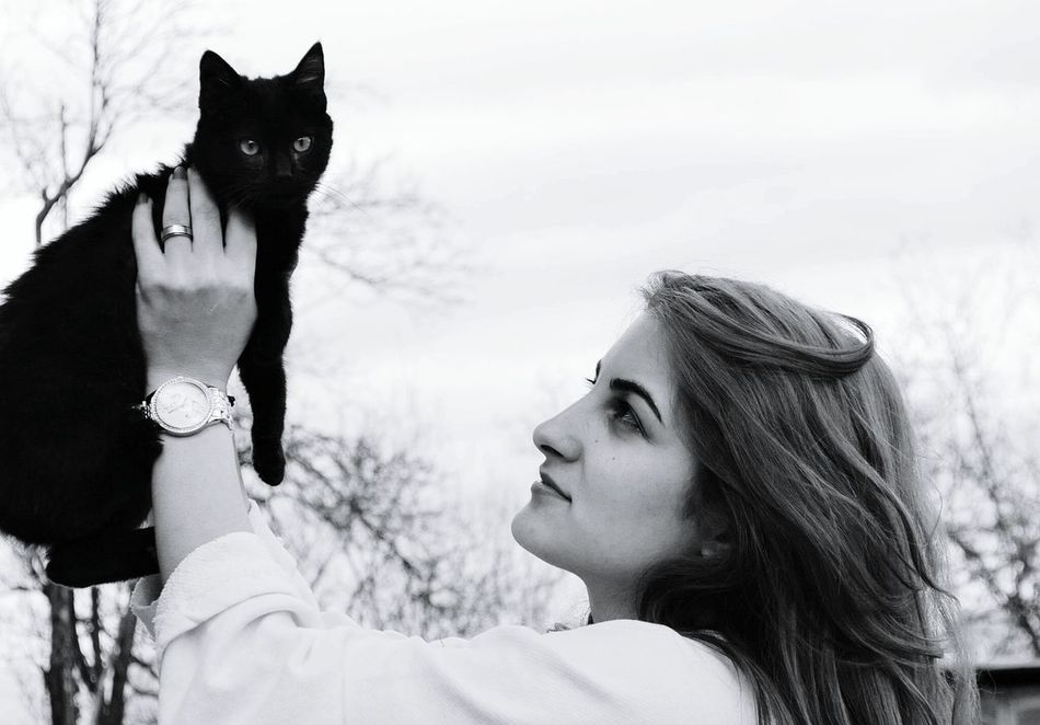 Cat♡ Animals Zoology Pets Animal Themes One Animal Pusspuss Cute Pets Black BLackCat Lovely ❤❤❤