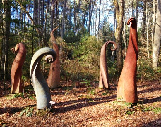 Perry Rudnick Trail Hendersonville,NC Outdoor Art A Walk In The Woods IPhoneography