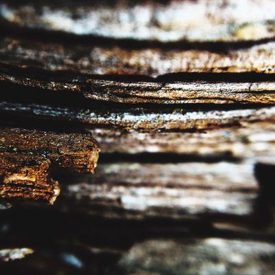 Layers of rock. Gambo Newfoundland Gambo Pond Iphonography Shot On IPhone 6s
