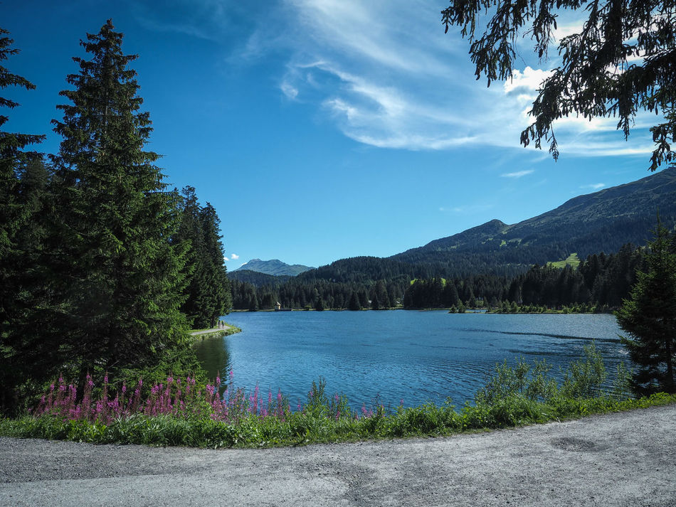Beauty In Nature Blue Cloud Day Graubünden Growth Heidsee Idyllic Lake Landscape Lenzerheide Mountain Mountain Range Nature No People Non-urban Scene Outdoors Plant Scenics Sky Switzerland Tranquil Scene Tranquility Tree Water