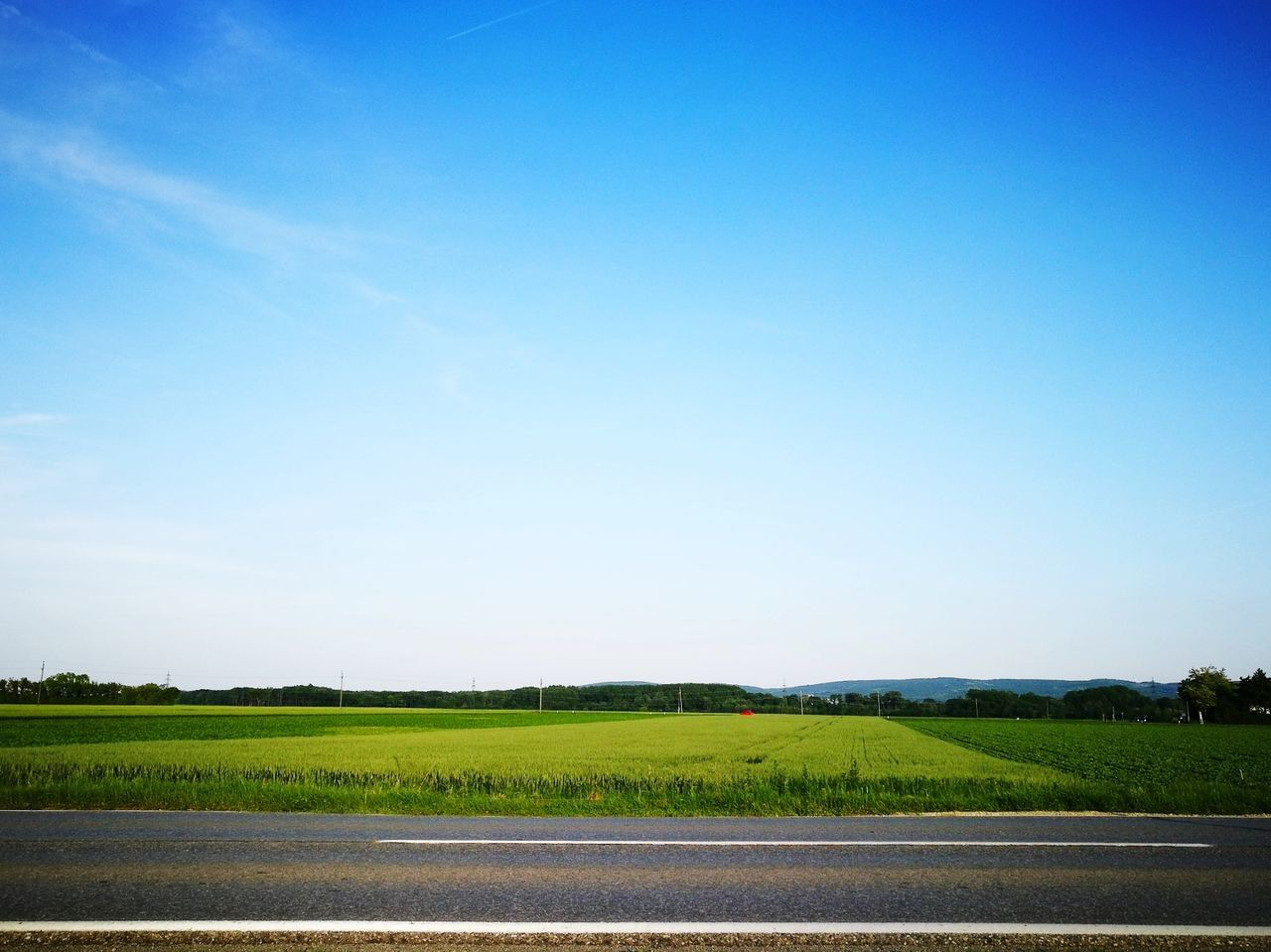Agriculture Field Farm Growth Rural Scene Crop  No People Beauty In Nature Cultivated Nature Day Outdoors Landscape Clear Sky Freshness Food Sky Scenics Irrigation Equipment Tree Austria Red Car EyeEmNewHere