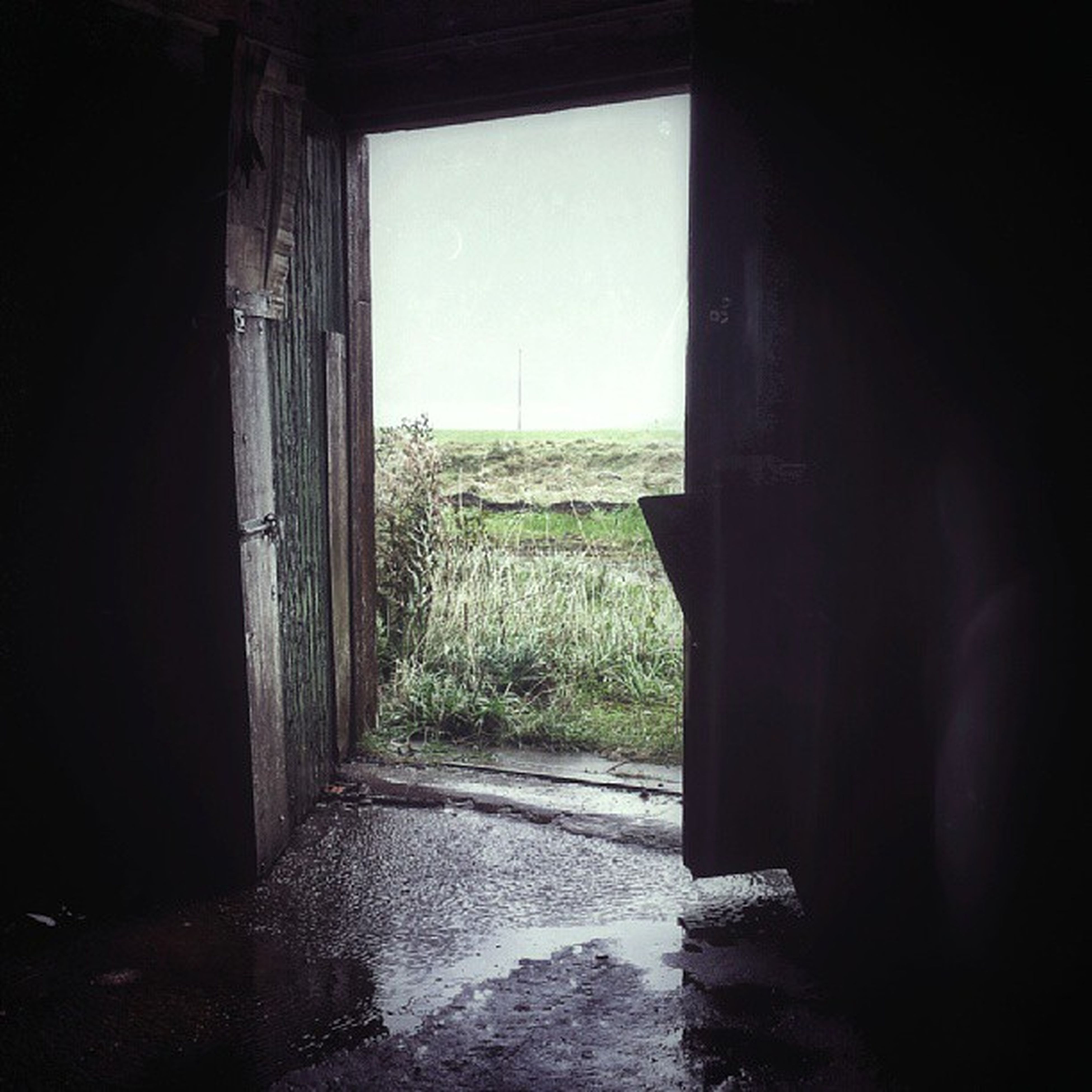 indoors, window, built structure, clear sky, architecture, abandoned, copy space, day, house, door, grass, no people, sunlight, tranquility, wall - building feature, old, nature, landscape, entrance, wall