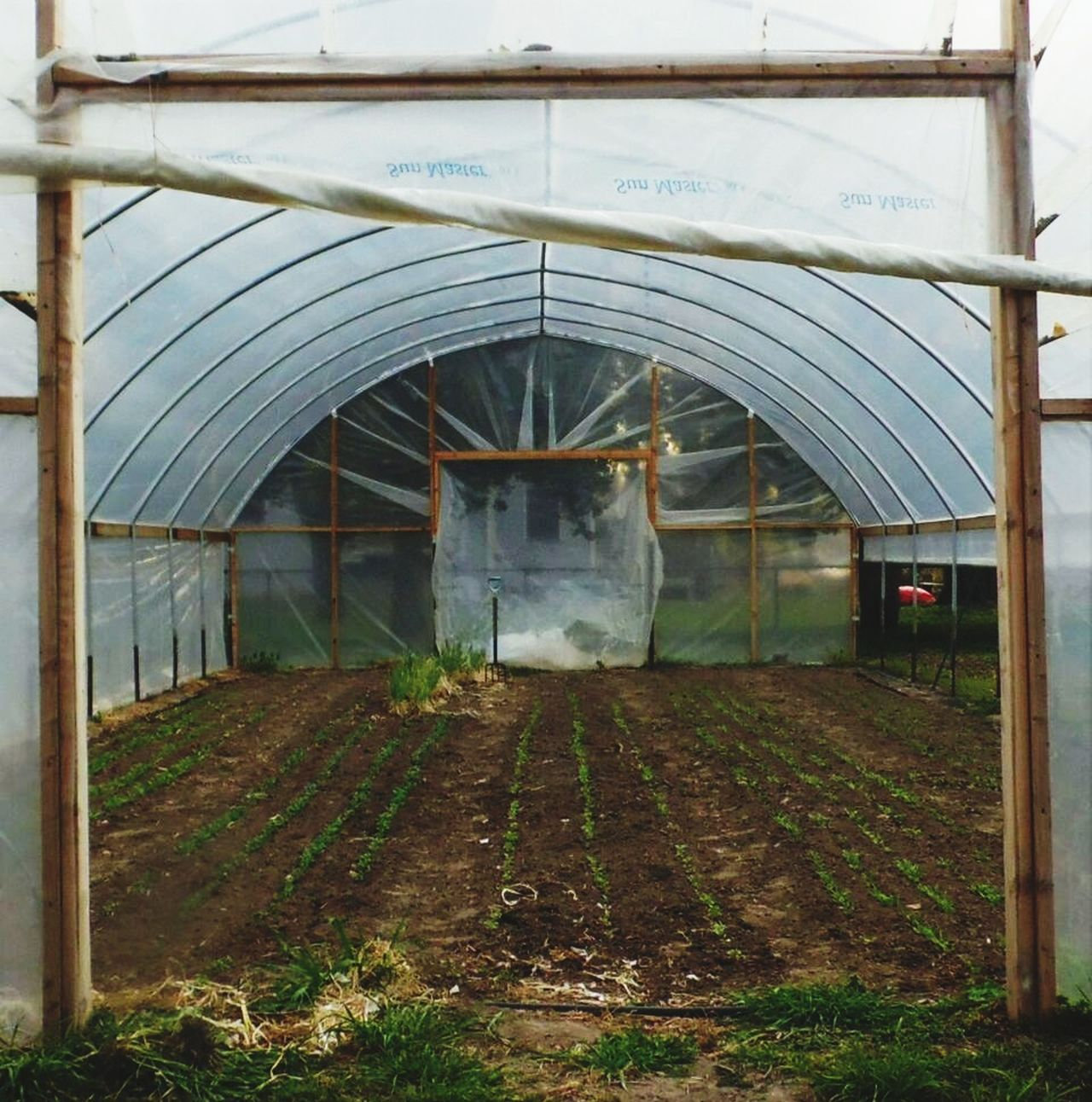 Greenhouse Food City Farming Built Structure No People