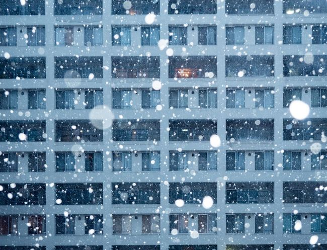 Snow ❄ Snow Kanagawa Aobadai Full Frame Backgrounds Night Illuminated Snowing Outdoors No People Winter Architecture Cold Temperature Building Exterior Nature Snowflake Shades Of Winter EyeEmNewHere The Graphic City Colour Your Horizn