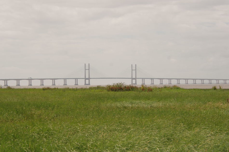 New Severn Crossing Bridge Architecture Grass For Ground Transportation Landscape