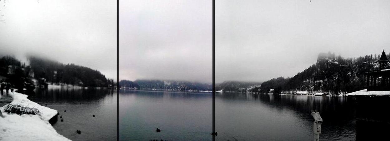 Bled, Slovenia Black&white Nature Iloveit blee:)