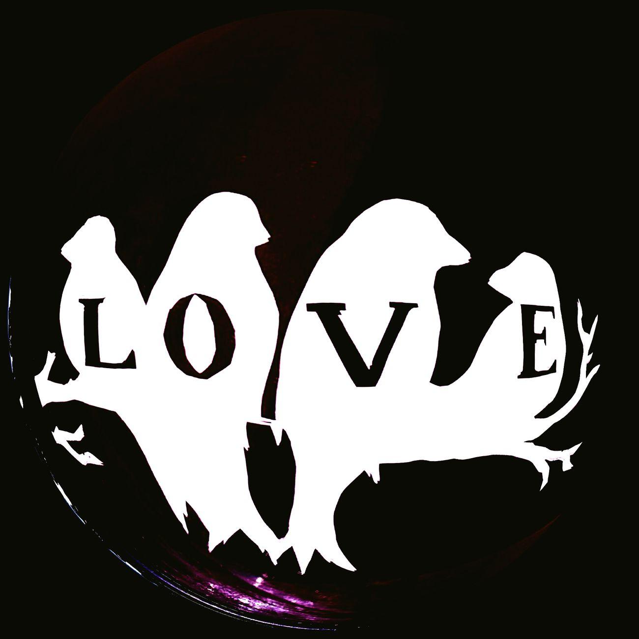 Love Birds! Love