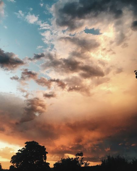 Beauty In Nature Cloud - Sky Day Gradient Low Angle View Nature No People Outdoors Pastel Scenics Silhouette Sky Sunset Tranquil Scene Tranquility Tree First Eyeem Photo EyeEmNewHere