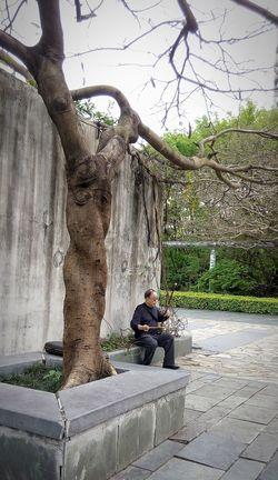 Playing Er Hu (national instruments) Musical Instruments Take Photos Streetphotography Enjoy LifeEcological square, Shenzhen, China