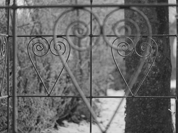 Cold Temperature Heart Metal No People Outdoors Selective Focus Winter Wire Nostalgia Wrought Iron Wrought Iron Design Macro Close-up Close Up Taking Photos From My Point Of View Frozen Tristesse Nature Bnw Black & White