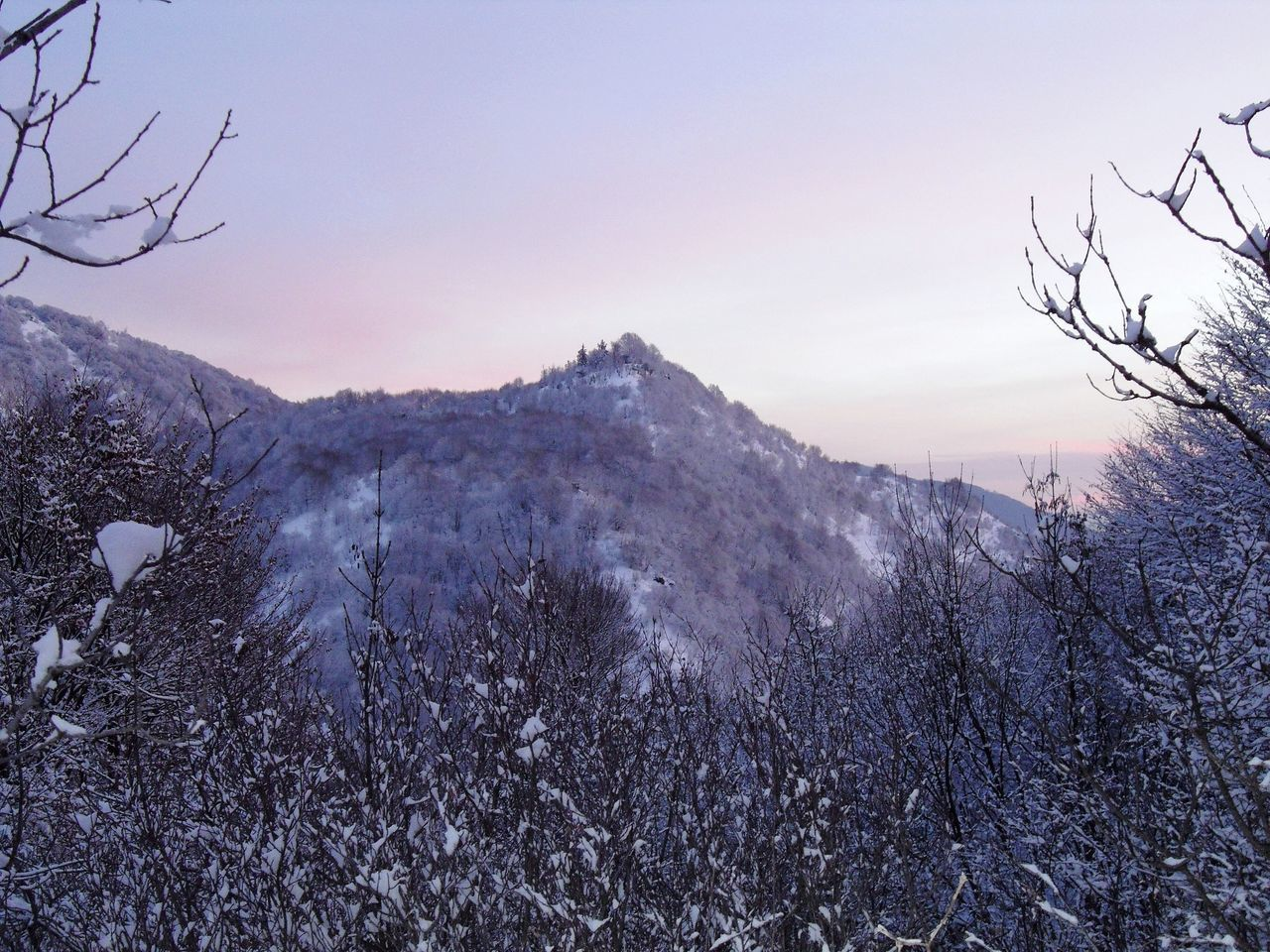 Quel soffice biancoviolaceo come un fiume su cui galleggiare Trees And Sky Snow Great Outdoors - 2016 EyeEm Awards OverviewPoint Peak Trees On The Mountain Outdoors Photograpghy  Winter Wonderland Dreaming Found On The Roll