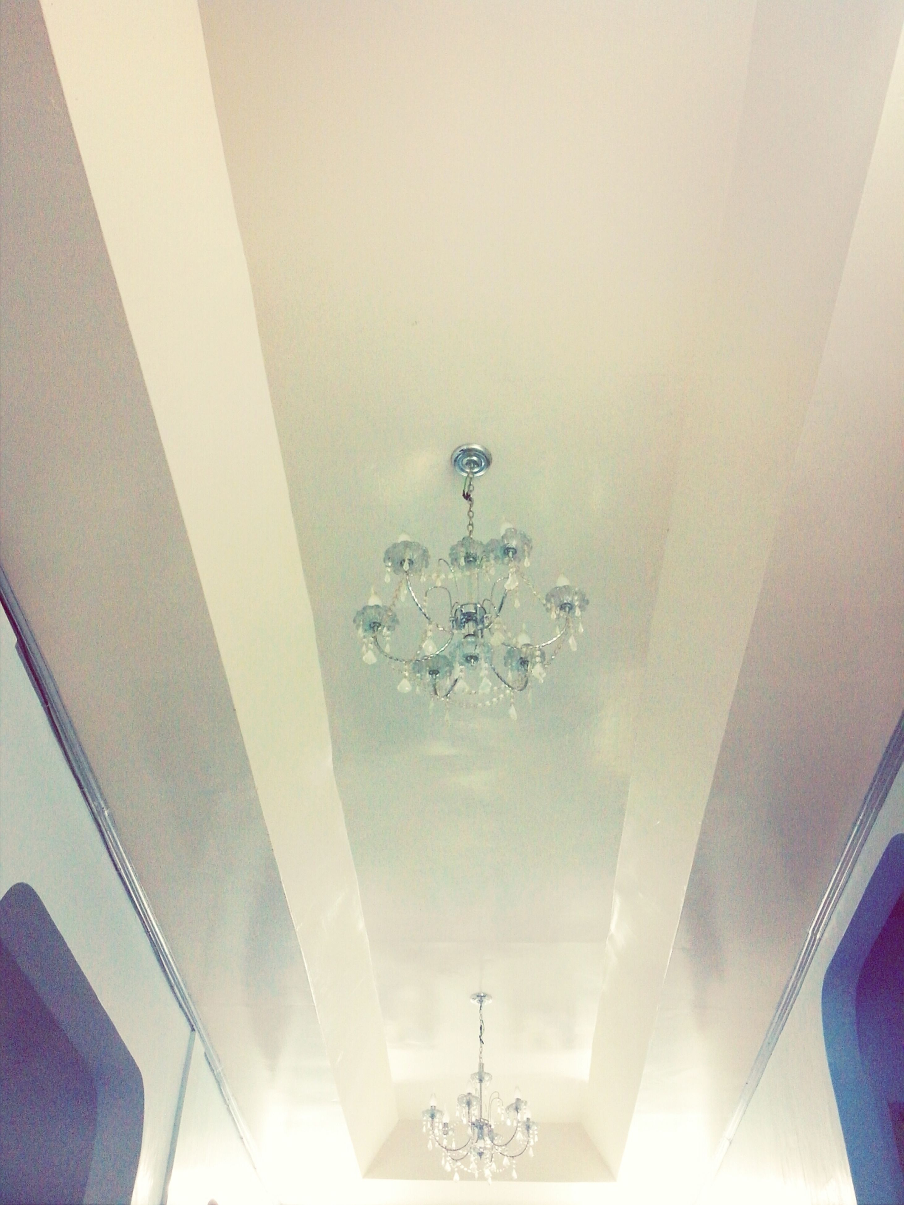 indoors, low angle view, ceiling, built structure, architecture, lighting equipment, hanging, no people, electricity, decoration, flower, day, growth, wall - building feature, glass - material, copy space, building, house, nature, illuminated