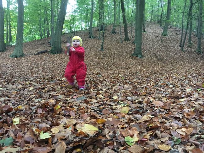 Child in the wild Autumn Nature Leaf Forest Beauty In Nature Man In Nature Naturephotography Autumn Colors