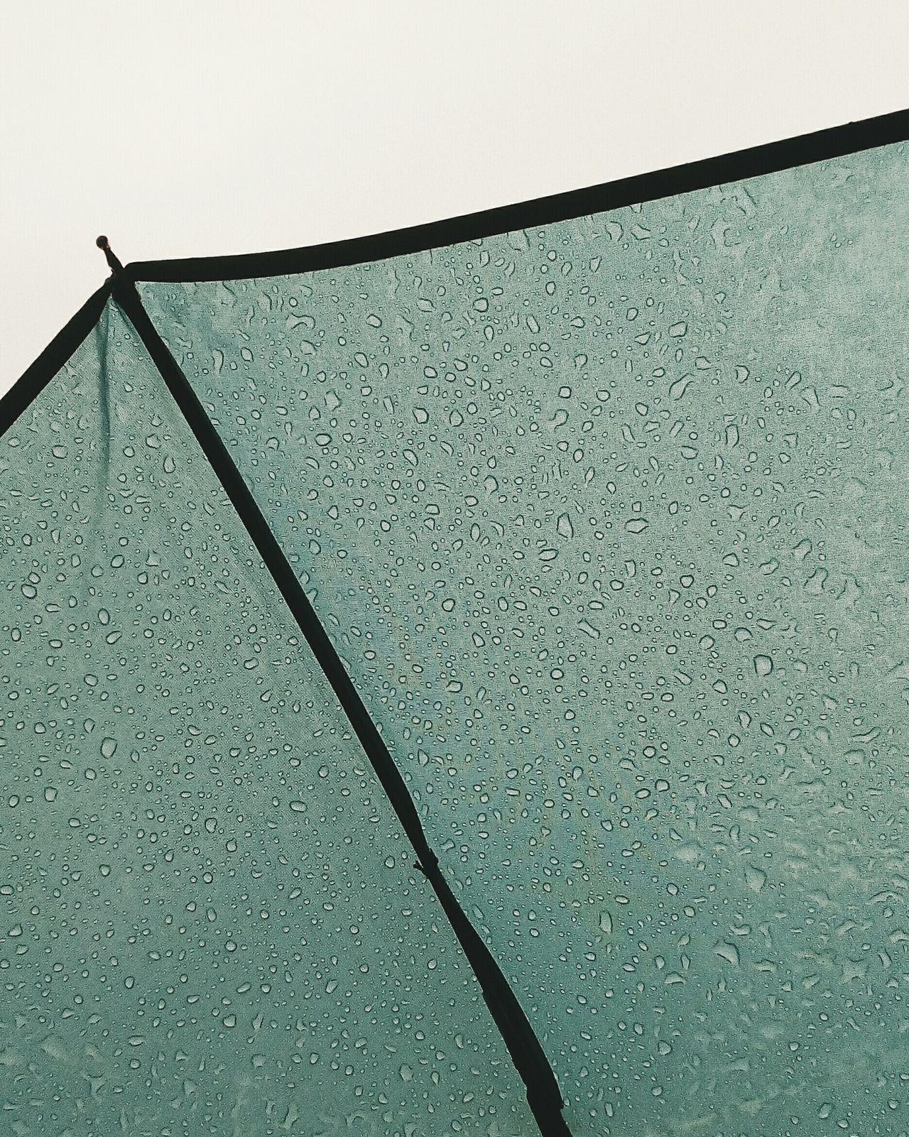 Rain Rainy Day Rain Drops Drops Unbrella Green VSCO Vscocam Low Angle View Outdoors Taipei City Taiwan Taipei,Taiwan City Citywalks POTD