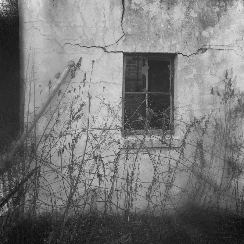 NEM Derelict Beautyofdecay NEM Submissions NEM Architecture NEM Mood Hipstamatic Behind The Veils NEM Black&white EE_Daily: Black And White