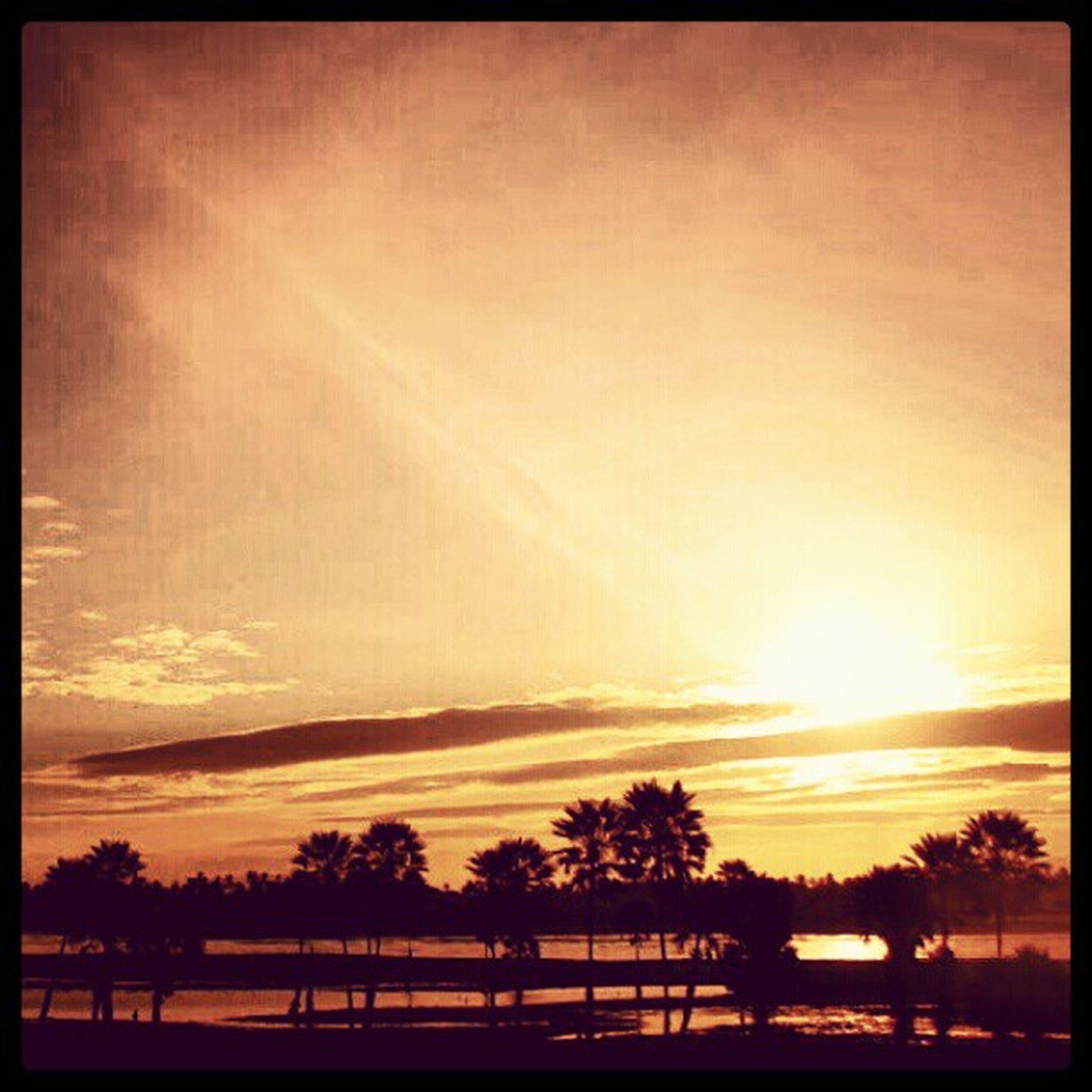 sunset, silhouette, tree, sun, beauty in nature, tranquility, transfer print, tranquil scene, scenics, sky, orange color, nature, auto post production filter, sunlight, idyllic, cloud - sky, outdoors, sunbeam, landscape, non-urban scene