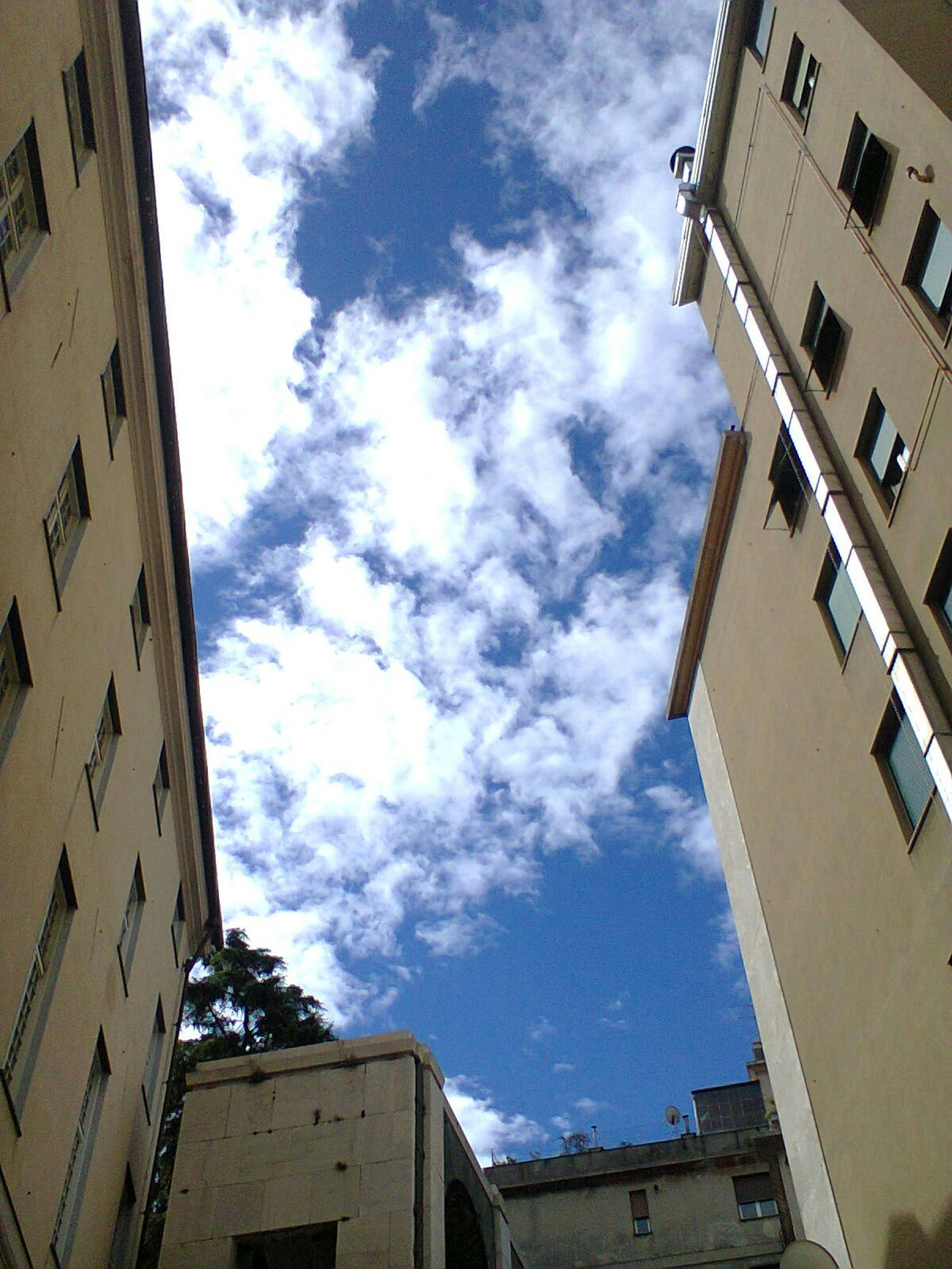 Library Sky Skyporn No Filter Blue Urban Geometry Genoa