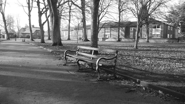 Longford Park Bench Park Bench Black And White Photography Black And White Black & White Park Amatuerphotography