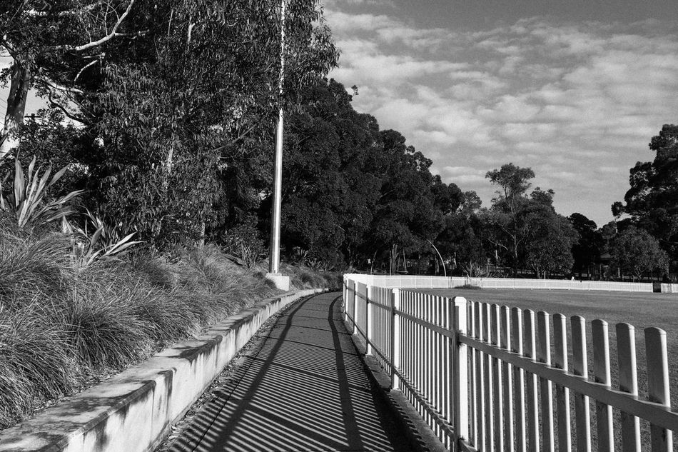 Eastwood oval Outdoors Beauty In Nature Day Nature Monochrome Shadows & Lights Cloud - Sky