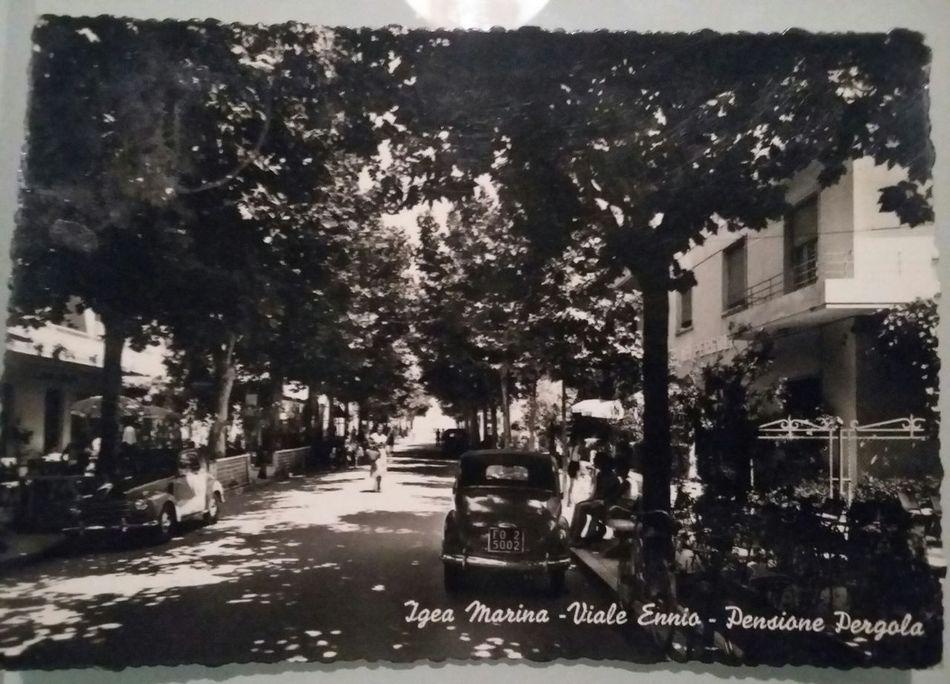 Igea Marina Italia Travel Destinations Postcard IT Vintage History Old-fashioned Building Exterior Sea Life