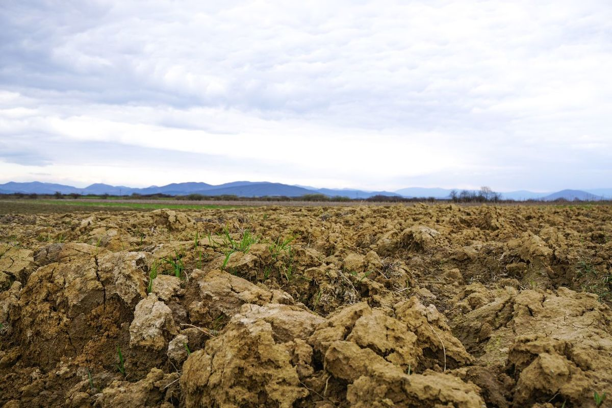 How Do We Build The World? Agriculture Agricultural Land Agriculture Photography Romania Soil Ground Economy Plant Planting Landscape Clouds And Sky Livestock Soilwork Village Life Infield Village View Husbandry Landscape_Collection March Outdoor Photography Exterior Outdoors Outdoor Landscapes With WhiteWall