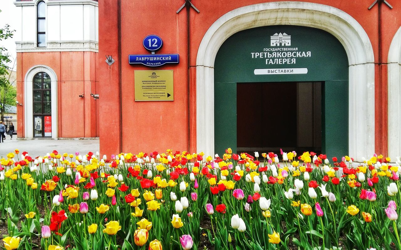 Msk Moscow Museum Gallery Nature_perfection Flowers Traveling Travel Travel Photography Nature Photography Hello World Russia Nature_collection Flowerporn Flower Collection Landscape_Collection