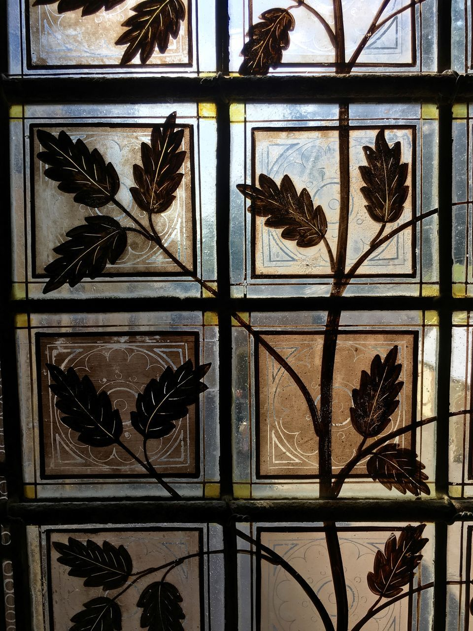 leaf, window, indoors, palm tree, plant, no people, nature, close-up, day