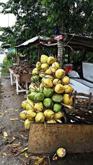 Rural Rural Scene Coconut Trees Streetphotography Street Rural Decay Vintage Nostalgic  Roadside Vending Roadside Vendor Fruit Food And Drink Day Outdoors Food Freshness Healthy Eating Large Group Of Objects Nature Food Stories