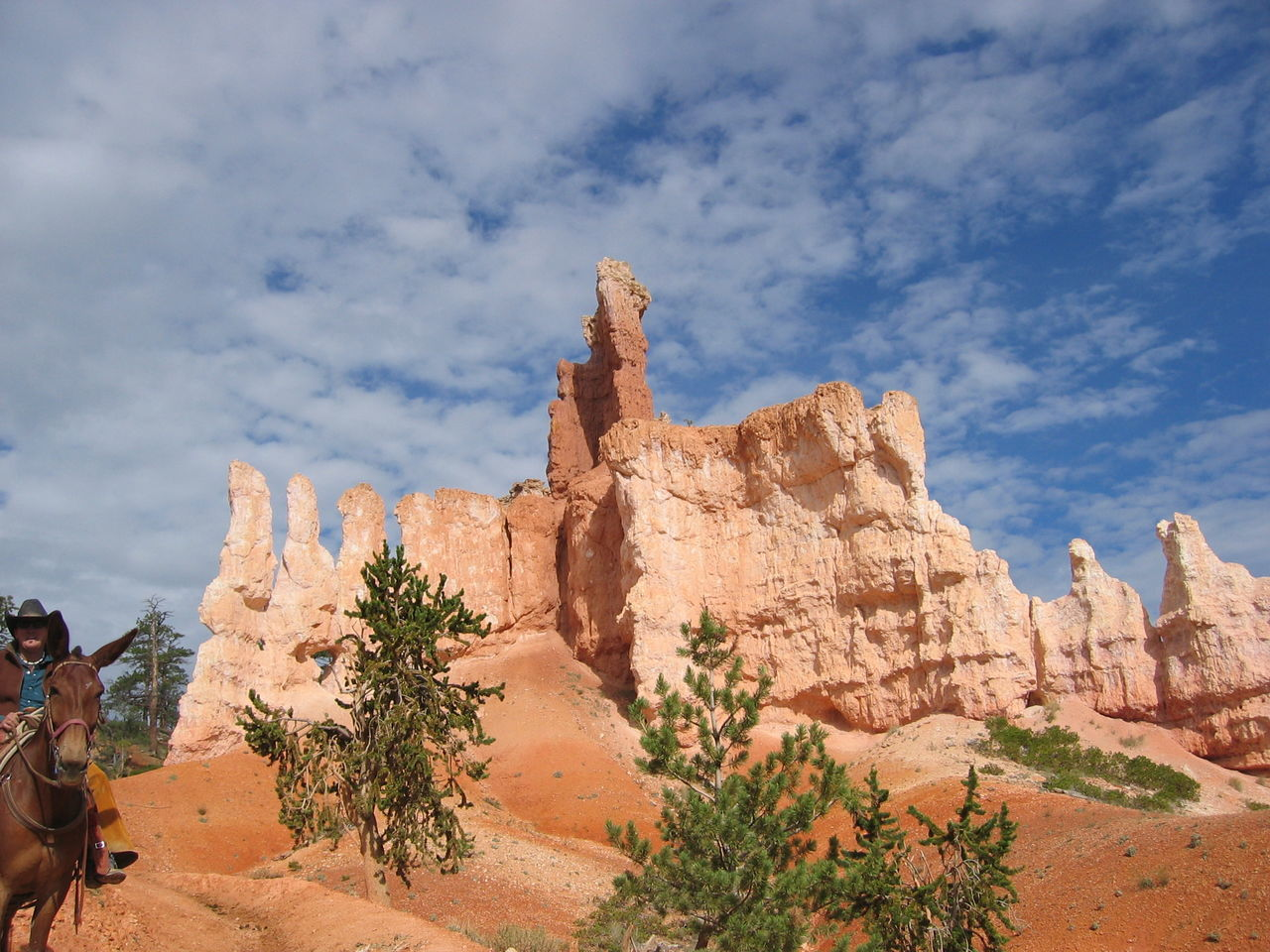 Beautiful stock photos of phoenix, Arizona, Beauty In Nature, Bryce Canyon, Bryce Canyon National Park