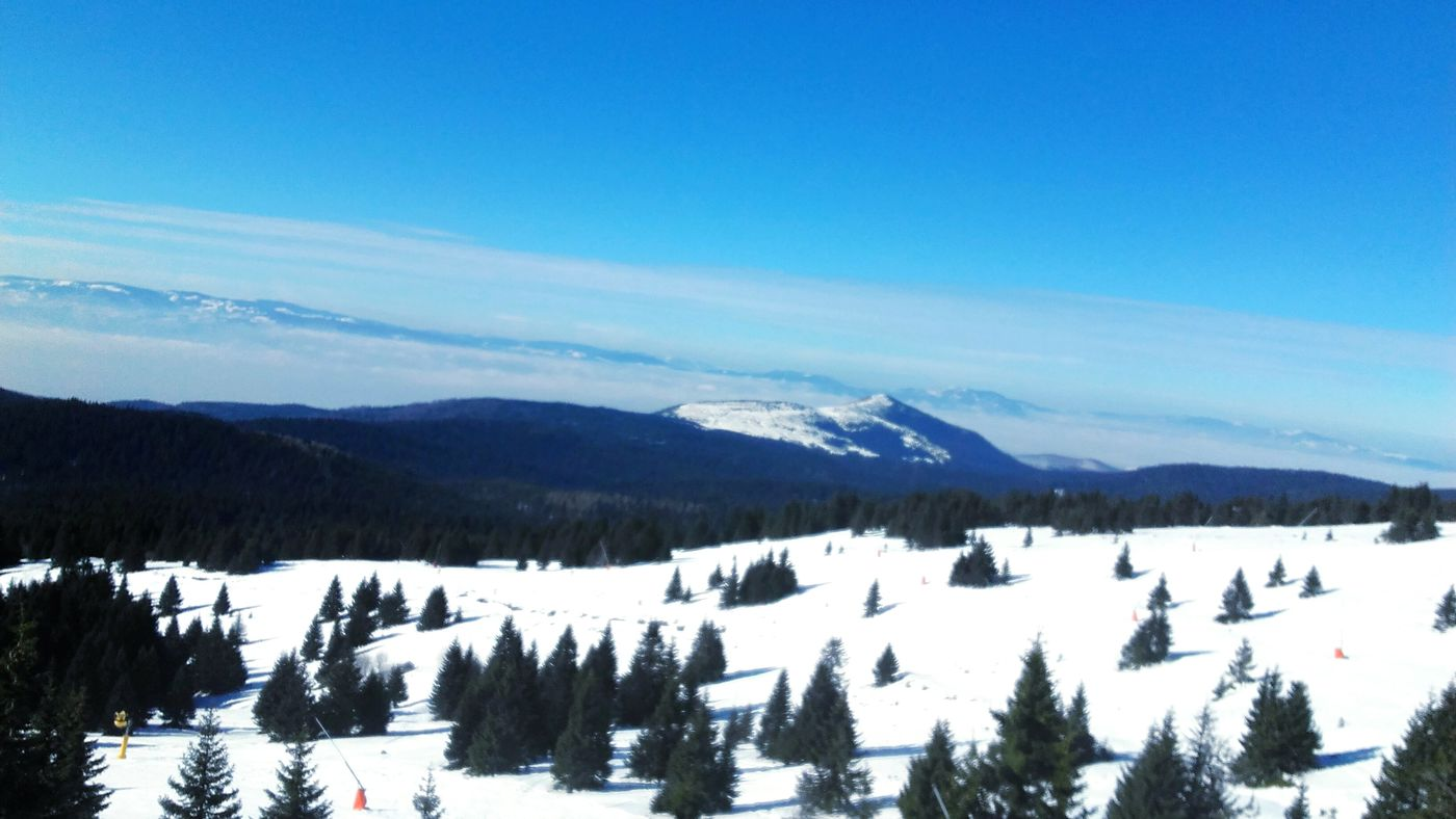 Snow Winter Cold Temperature Beauty In Nature Tree Blue Mountain Nature Day Sky Kopaonik Kopaonik, Serbia White Skiing Mountains Blue Sky Likeforlike Like4like Serbia Beautiful Nature Winter Beauty In Nature Tree