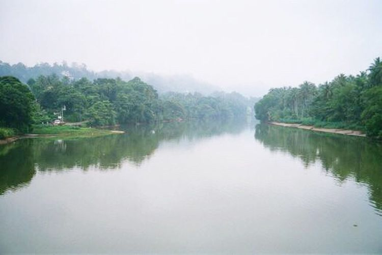 Mahaweli Mahaweli River Srilanka Mahaweli_river Riverside Photography Riverside View Riverbank Riverscape River Collection Nature Photography Nature Nature_collection Sri Lanka Srilankan