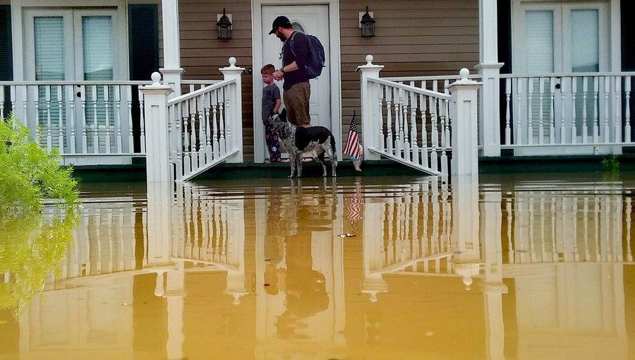 Flood Water August 2016 August Flood Louisiana Louisiana Flood 1000 Year Flood