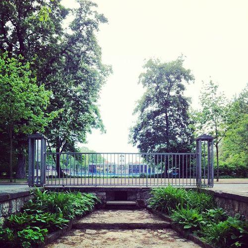 | ___ | Weimarhallenpark Weimar