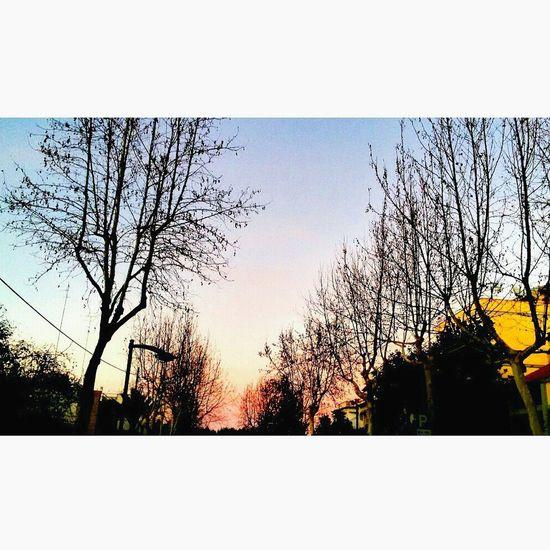 Sky Verybeautiful Sunset Italy Lecce Winter Warmwinter