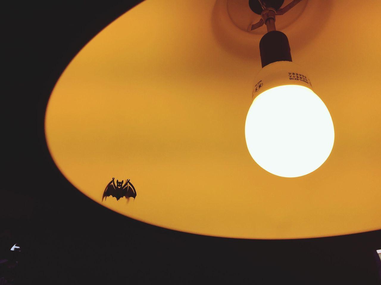 Beautiful stock photos of halloween, , Animal Representation, Bat, Celebration Event