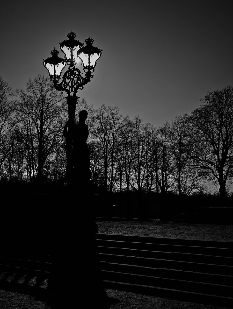 Silhouette Of Person Embracing Street Light