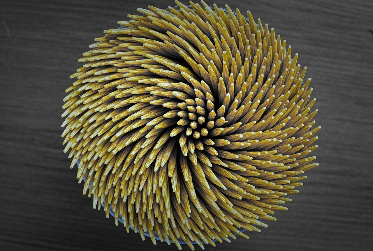 Flexibility Food Close-up Day No People Macro Bamboo In A Row Macro Art Wallpaper Background Grey And Yellow Sphere Welcome To Black Break The Mold