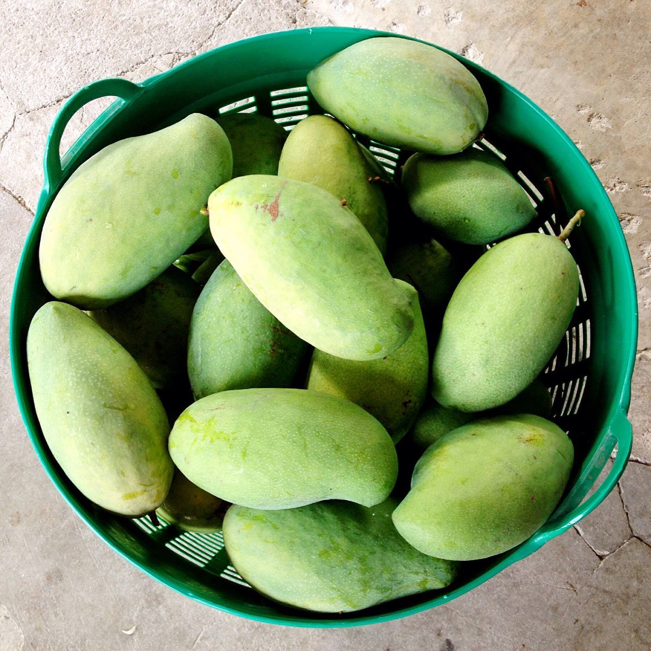 Mango Mango In Bucket form my backyard, lopuri, thailand.