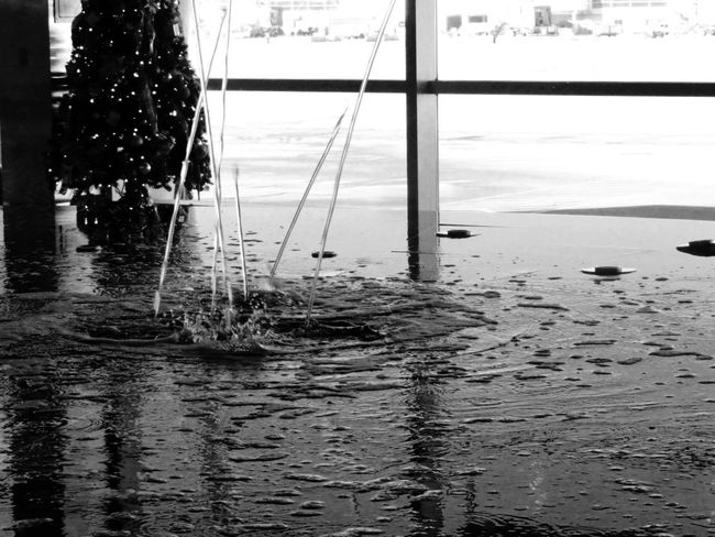 Airport Black And White Christmas Tree Day Fountain Nature No People Non-urban Scene Outdoors Scenics Suspension Bridge Terminal Tranquility Water Waterfront Waves Xmas Tree