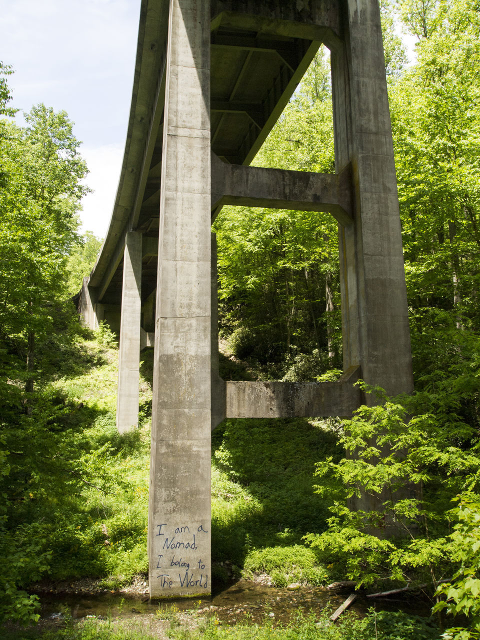 bridge - man made structure, connection, architecture, built structure, tree, architectural column, outdoors, below, no people, low angle view, day, underneath, nature