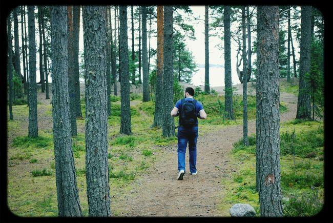 island Kojonsaari ♥ Travelling Karelia Forest The Path Less Traveled By Pointer Footwear