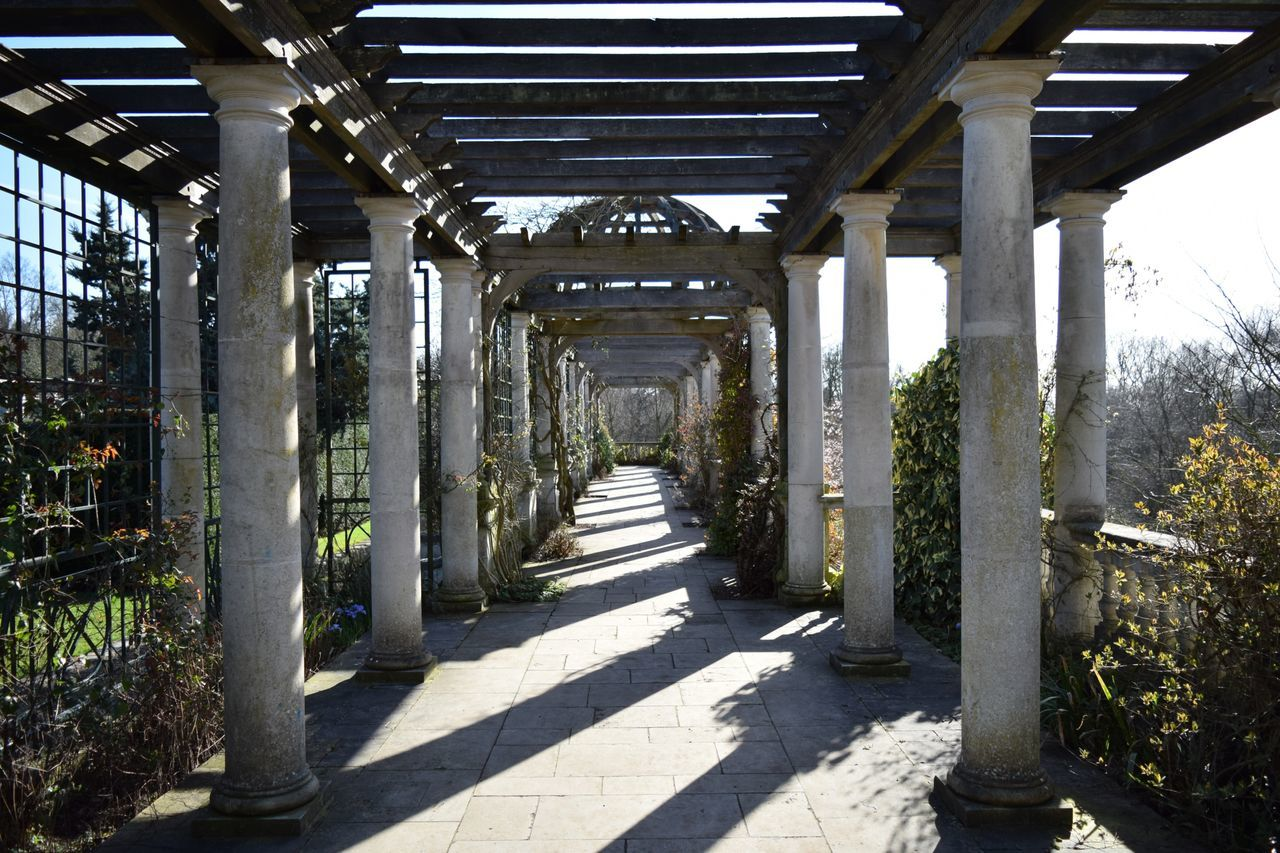 No People Plant Day Indoors  Architecture Nature Greenhouse Weathered Stone The Way Forward Perspective Path To Nowhere Pillars Ruins Old Buildings Nikon NIKON D5300 Nikonphotography Hampstead Heath