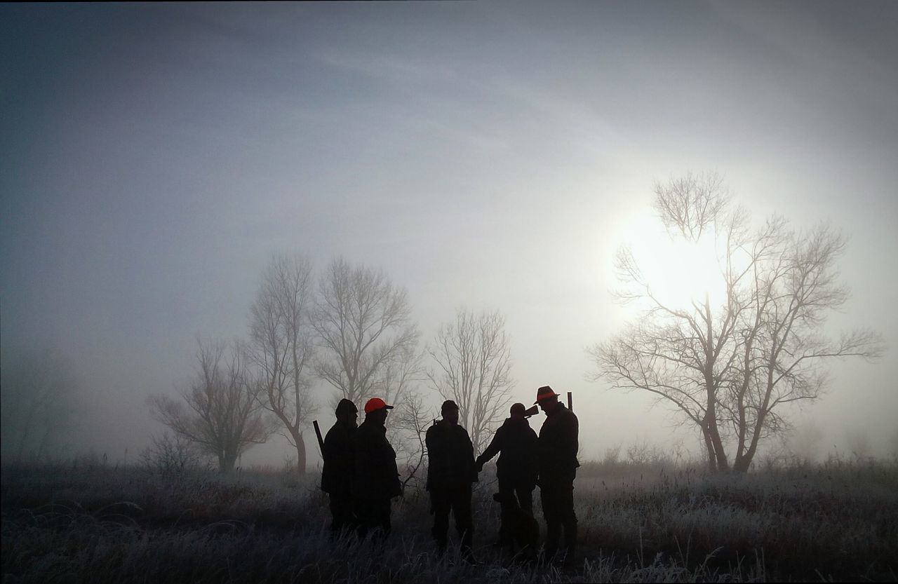 Beautiful stock photos of hunting, Bare Tree, Beauty In Nature, Cold Temperature, Field