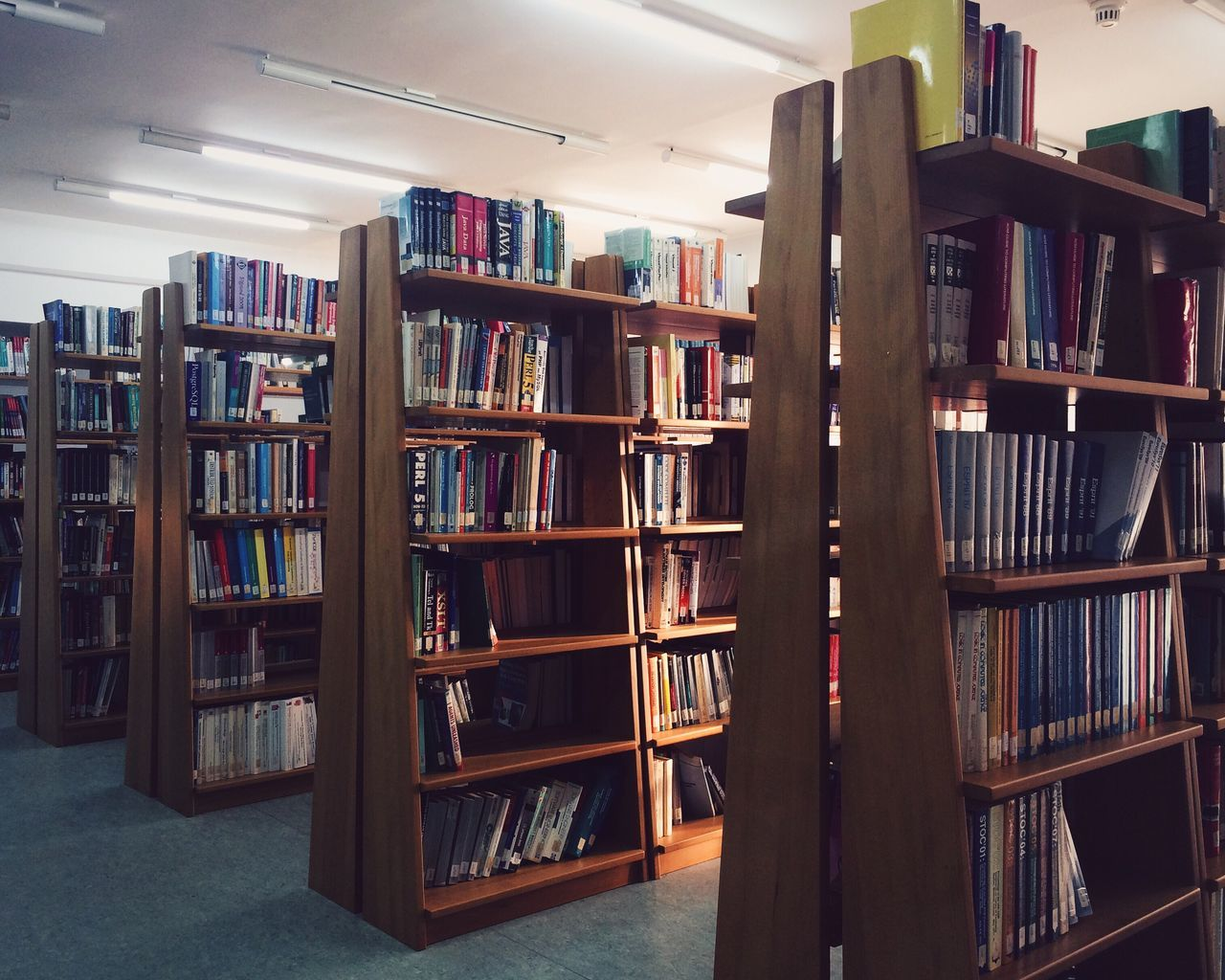 Book Bookshelf Library Education Shelf Learning Literature Large Group Of Objects Wisdom In A Row Arrangement Collection Choice Intelligence Bookstore Indoors  No People High School Building Day