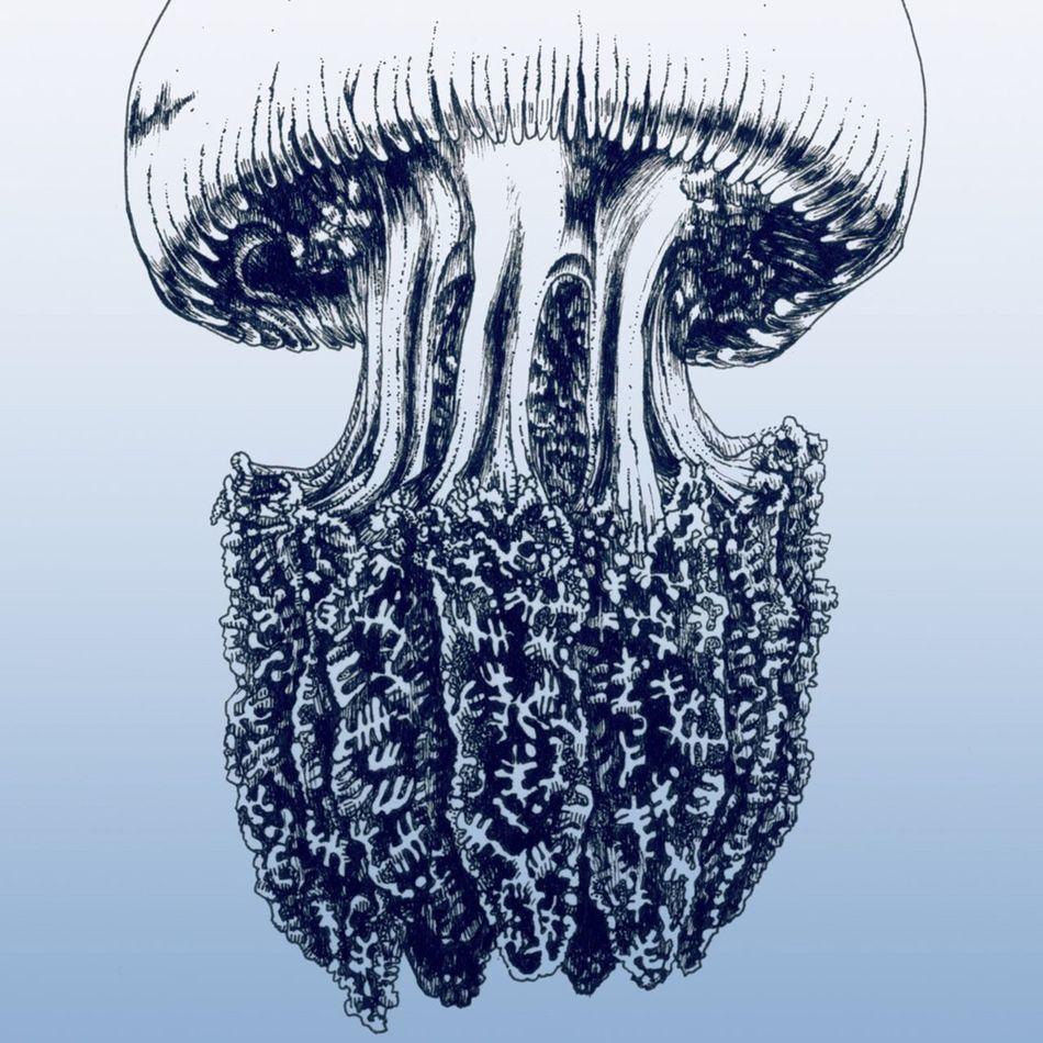 クラゲ Blackandwhite Illustration Psychedelic Dark Ink Witch Drawing Surrealism Pen Drawing Underwater Art ドローイング ペン画 絵 Jellyfish Color Jellyfish カラージェリー