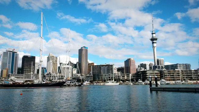 Cityscapes Auckland SkyTower from the newly regenerated harbour front Newzealand