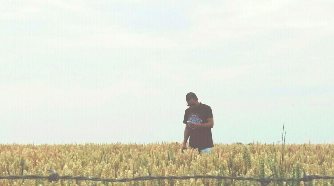 🌾 WHEATFIELDS Landscape Landscape_photography Photography Photoshoot Photooftheday PhonePhotography Photographer That's Me Enjoying Life Southern Limburg Southside Netherlands Wheat Wheatgrass Wheatfield Nature Photography Nature Pictureoftheday Sunnyday Photojournalism Picoftheday Perfectshot View Peace