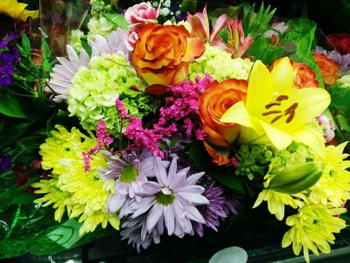 Loving fresh flowers Taking Photos Enjoying Life Flowers Mobilephoto Streamzoofamily