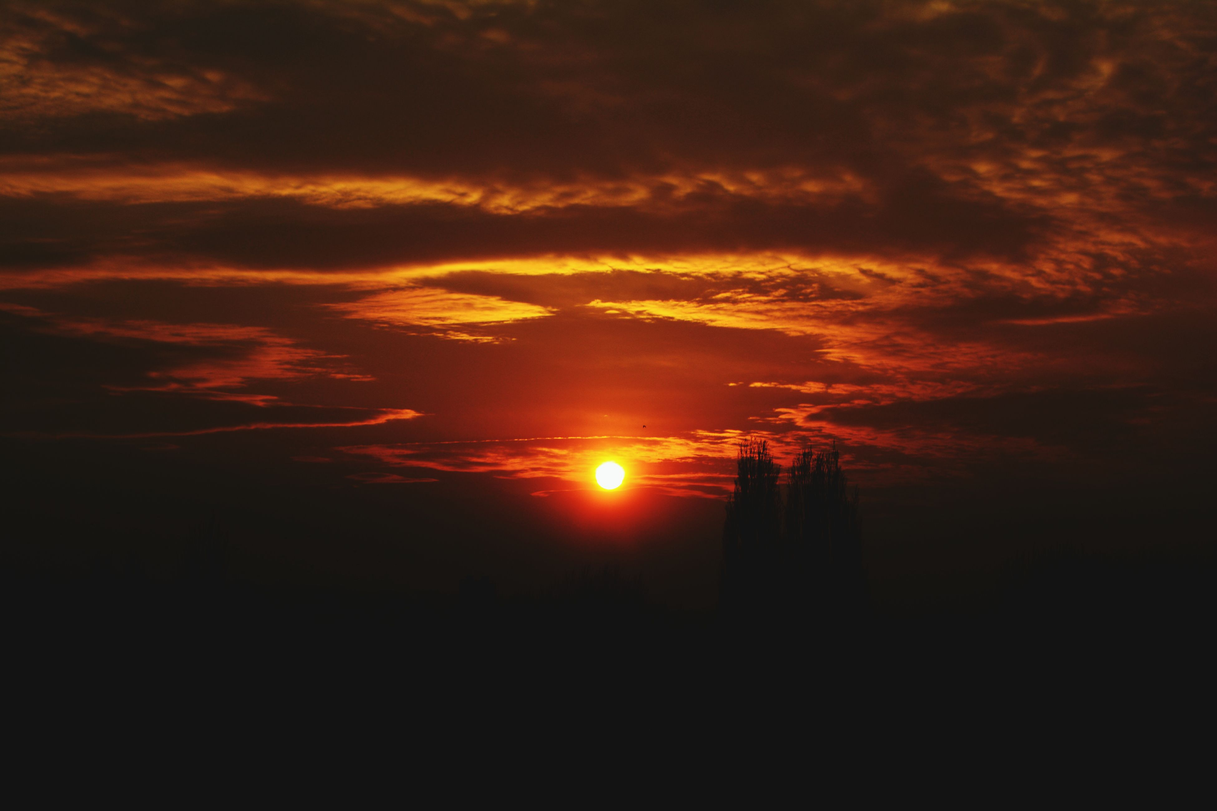 sunset, silhouette, orange color, sky, scenics, beauty in nature, sun, tranquil scene, tranquility, cloud - sky, idyllic, dramatic sky, nature, cloud, dark, cloudy, low angle view, moody sky, sunlight, atmospheric mood