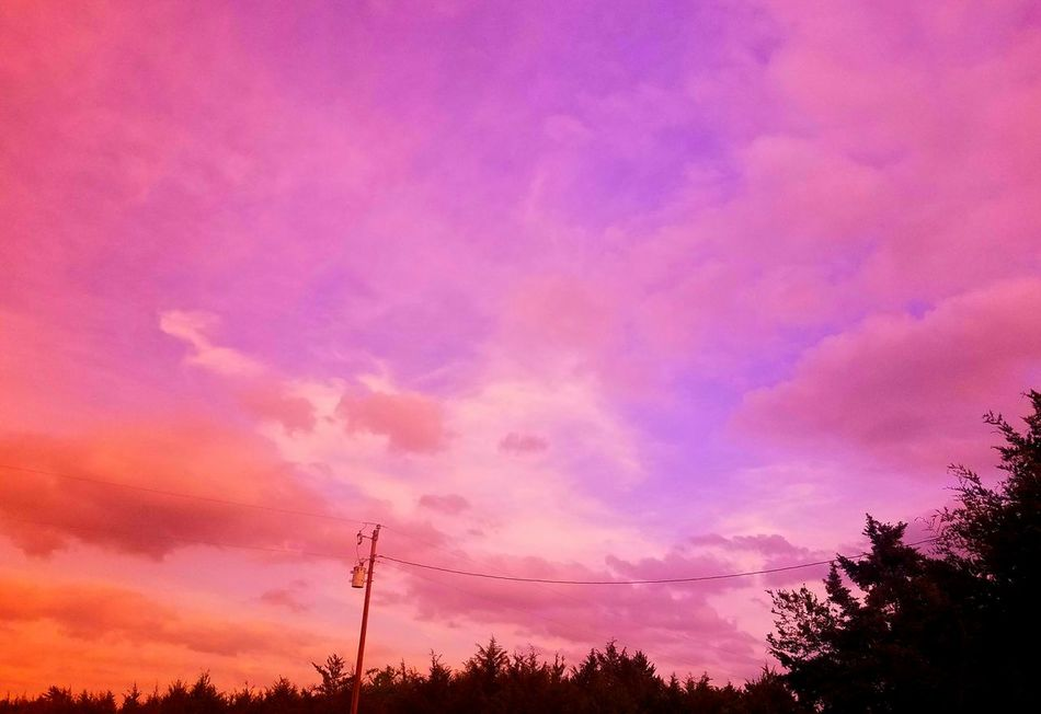 Double filtered double stacked, red max, orange offset Sunset Cloud - Sky No People Pink Color Sky Silhouette Outdoors Purple Scenics Tree Low Angle View Landscape Nature Beauty In Nature Electricity Pylon Day NoEdits  NoEdits  NoEdits  NoEdits  NoEdits  Art Is Everywhere Break The Mold